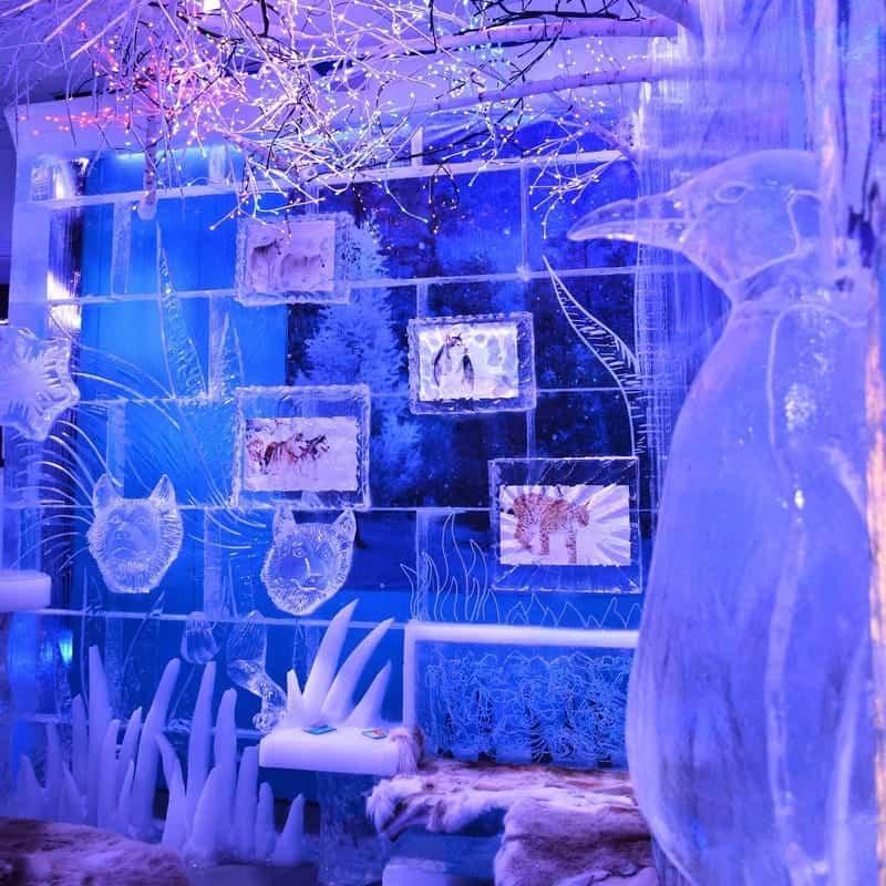 Lots of Interactive Ice Sculptures