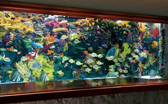 The Mirage Hotel's Aquarium