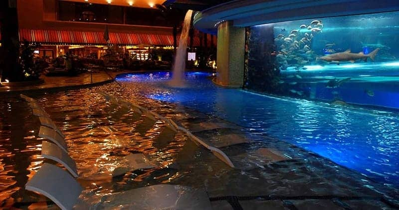 The Tank Pool at Golden Nugget 1
