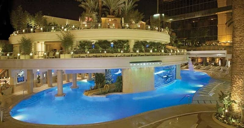 The Tank Pool at Golden Nugget 2