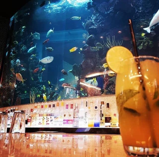 Chart House Restaurant Aquarium